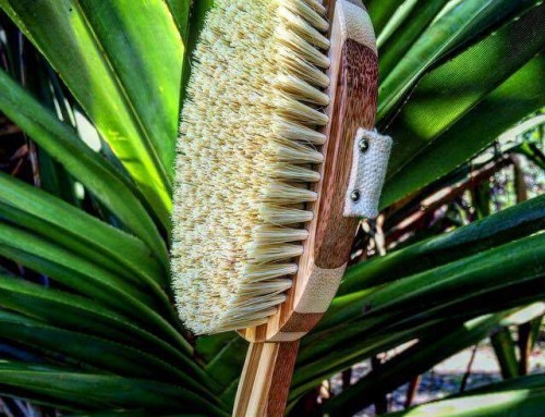 Dry Body Brushing to Glow Inside and Out